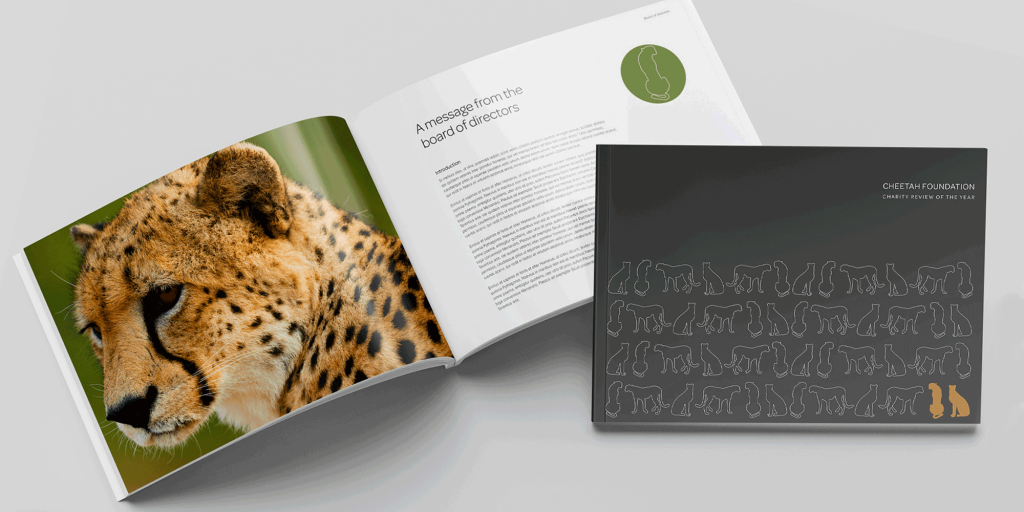 Example brochure pages